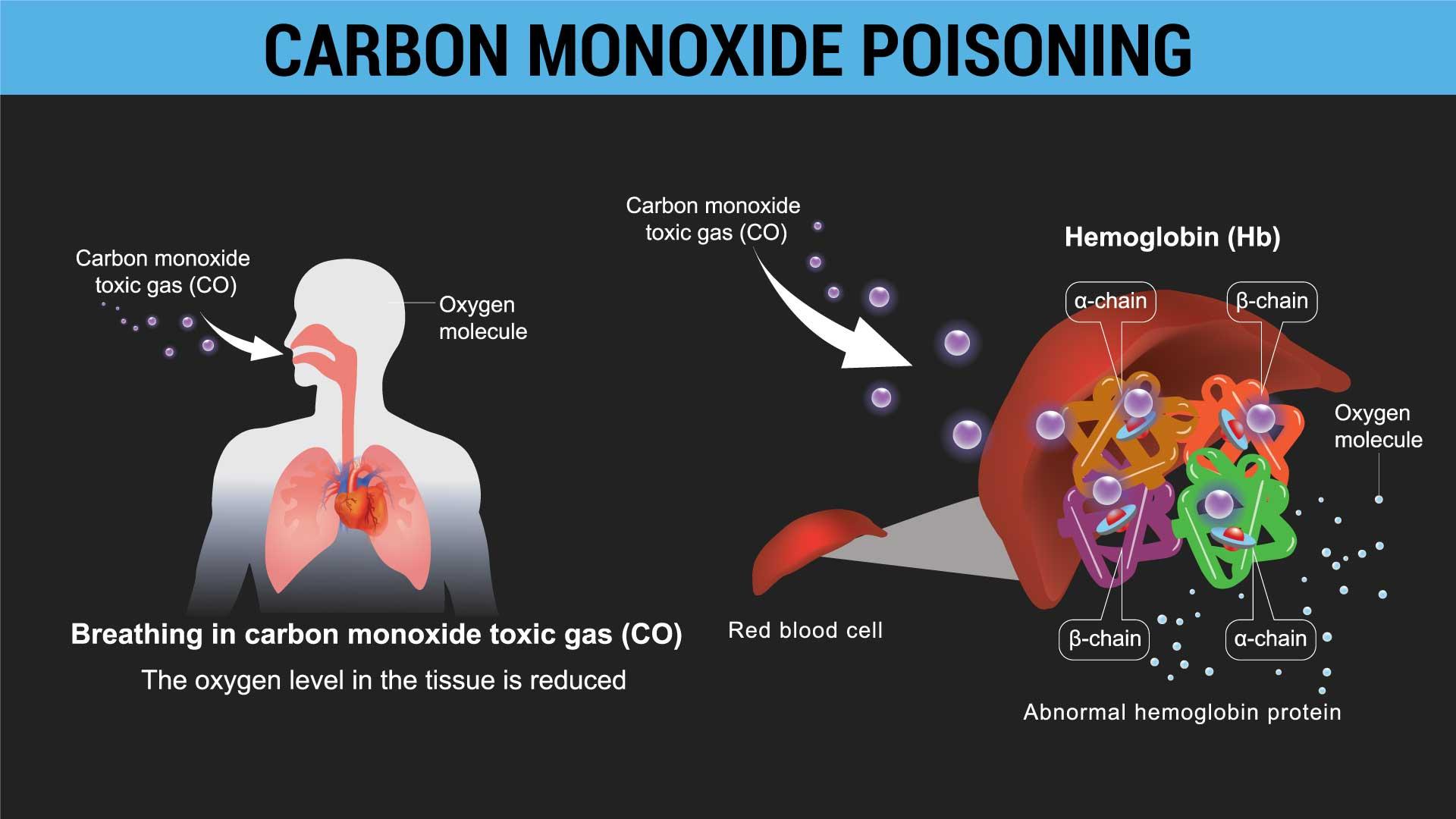carbon monoxide poisoning in a campervan 02